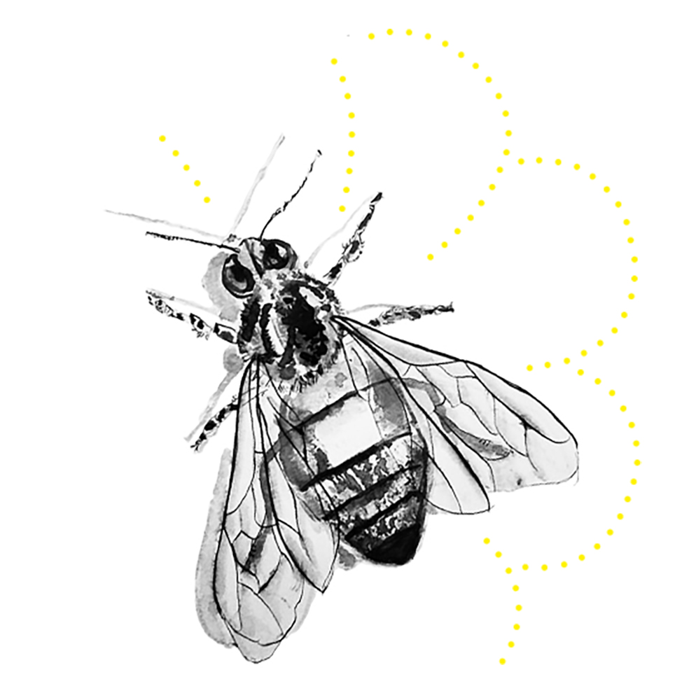Sophie Meyers of a Bee, drawn with black and white watercolors with yellow dots in the shape of a flower around the bee